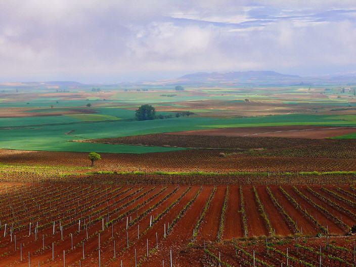 Alojamiento rural en La Rioja. Señorío de Moncalvillo.